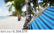 Купить «Close up of hammock swinging on tropical beach», видеоролик № 6304079, снято 30 июля 2014 г. (c) Syda Productions / Фотобанк Лори