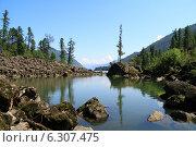 Купить «Каменный залив на озере Телецком», фото № 6307475, снято 21 августа 2013 г. (c) Olivas / Фотобанк Лори
