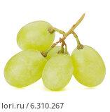 Купить «Green grape bunch», фото № 6310267, снято 23 июля 2013 г. (c) Natalja Stotika / Фотобанк Лори