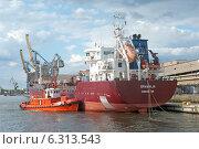Купить «Погрузочный терминал в портовой гавани», эксклюзивное фото № 6313543, снято 23 августа 2014 г. (c) Svet / Фотобанк Лори