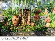 Сад цветов , Таиланд (2013 год). Стоковое фото, фотограф Павлова Дарья / Фотобанк Лори
