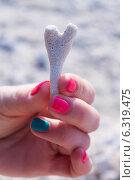 Коралл в виде сердца. Стоковое фото, фотограф Павлова Дарья / Фотобанк Лори