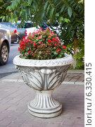 Купить «Декоративный вазон с бегониями в городском ландшафте», фото № 6330415, снято 20 августа 2014 г. (c) Наталья Осипова / Фотобанк Лори