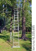 Купить «Трехсекционная лестница-стремянка, прислоненная к дереву на приусадебном участке», фото № 6335695, снято 24 августа 2014 г. (c) Александр Замараев / Фотобанк Лори