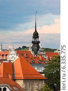Купить «Крыши города Марибор, Словения», фото № 6335775, снято 17 июля 2014 г. (c) Анастасия Золотницкая / Фотобанк Лори