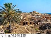 Купить «Археологический музей в Пафосе. Кипр», фото № 6340835, снято 25 июня 2013 г. (c) Евгений Дробжев / Фотобанк Лори