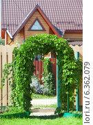 Купить «Калитка, увитая виноградом», фото № 6362079, снято 20 августа 2014 г. (c) Юлия Кузнецова / Фотобанк Лори