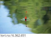 Купить «Поклёвка. Круги на воде от поплавка.», эксклюзивное фото № 6362651, снято 19 августа 2014 г. (c) Dmitry29 / Фотобанк Лори