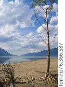 Алтай. Берег в южной оконечности Телецкого озера. Стоковое фото, фотограф Alexander Zholobov / Фотобанк Лори