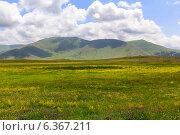 Купить «Красивый горный пейзаж. Кавказ. Армения», фото № 6367211, снято 5 июля 2013 г. (c) Евгений Ткачёв / Фотобанк Лори