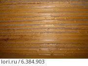 Стена из свежего бруса с паклей. Стоковое фото, фотограф Александра Андрющенко / Фотобанк Лори