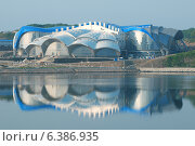 Купить «Океанариум, Владивосток, остров Русский», фото № 6386935, снято 3 июля 2014 г. (c) KEN VOSAR / Фотобанк Лори