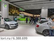 Купить «Зал Skoda», фото № 6388699, снято 3 сентября 2014 г. (c) Павел Лиховицкий / Фотобанк Лори