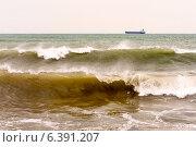 Грузовой корабль с волнами на переднем плане. Стоковое фото, фотограф Владимир Николаевич Гневушев / Фотобанк Лори