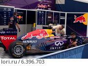 Болид. Формула 1. Red Bull. (2014 год). Редакционное фото, фотограф Степанова М Е / Фотобанк Лори