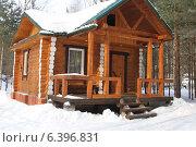 Деревянный дом. Зимой в лесу. Стоковое фото, фотограф Степанова М Е / Фотобанк Лори