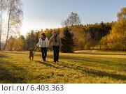 Купить «Couple walking dog autumn sunset landscape», фото № 6403363, снято 31 октября 2013 г. (c) CandyBox Images / Фотобанк Лори