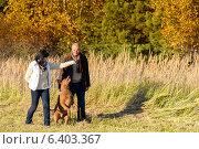 Купить «Couple playing with dog autumn sunny countryside», фото № 6403367, снято 31 октября 2013 г. (c) CandyBox Images / Фотобанк Лори