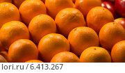 Купить «Close-up of oranges for sale at a market stall, Pike Place Market, Seattle, Washington State, USA», фото № 6413267, снято 3 апреля 2013 г. (c) Ingram Publishing / Фотобанк Лори