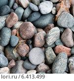 Купить «Close-up of pebbles, Portland Creek, Gros Morne National Park, Newfoundland And Labrador, Canada», фото № 6413499, снято 28 августа 2013 г. (c) Ingram Publishing / Фотобанк Лори