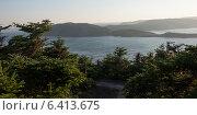 Купить «Tops of evergreens along coastline, Skerwink Trail, Trinity, Trinity Bay, Bonavista Peninsula, Newfoundland And Labrador, Canada», фото № 6413675, снято 22 августа 2013 г. (c) Ingram Publishing / Фотобанк Лори