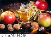 Стеклянная банка меда, яблоки, колосья пшеницы, каштаны и грецкие орехи на черном деревянном столе. Стоковое фото, фотограф Natasha Breen / Фотобанк Лори