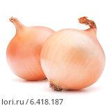 Купить «Gold onion vegetable bulbs», фото № 6418187, снято 15 февраля 2013 г. (c) Natalja Stotika / Фотобанк Лори