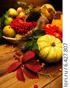 Купить «Thanksgiving day autumnal still life», фото № 6427807, снято 11 сентября 2014 г. (c) Andrejs Pidjass / Фотобанк Лори
