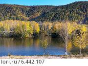 Осень на Дальневосточном озере. Стоковое фото, фотограф Александр Носков / Фотобанк Лори