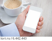 Купить «Businessman's Hand Holding Cellphone With Blank Screen», фото № 6442443, снято 25 марта 2014 г. (c) Андрей Попов / Фотобанк Лори
