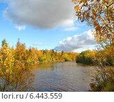 Купить «Осенний пейзаж. Река Ягенетта, Ямало-Ненецкий автономный округ», фото № 6443559, снято 16 сентября 2014 г. (c) Николай Белецкий / Фотобанк Лори