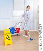 Купить «Happy Maid Cleaning Floor With Mop», фото № 6460727, снято 11 января 2014 г. (c) Андрей Попов / Фотобанк Лори