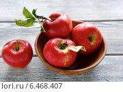 Красные яблоки в деревянной миске. Стоковое фото, фотограф Афанасьева Ольга / Фотобанк Лори