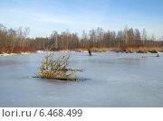 Первый лед на канале. Стоковое фото, фотограф Елена Коромыслова / Фотобанк Лори