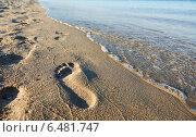 Купить «human footstep at sea beach», фото № 6481747, снято 12 июня 2014 г. (c) Дмитрий Калиновский / Фотобанк Лори