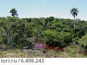 Купить «Горная река Каньо Кристалес. Колумбия», фото № 6498243, снято 6 ноября 2012 г. (c) Free Wind / Фотобанк Лори