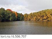 Купить «Декоративные пруды в Измайловском парке осенью», эксклюзивное фото № 6506707, снято 1 октября 2014 г. (c) lana1501 / Фотобанк Лори