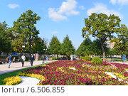 Купить «Москва, Цветной бульвар летом», эксклюзивное фото № 6506855, снято 19 сентября 2014 г. (c) Володина Ольга / Фотобанк Лори