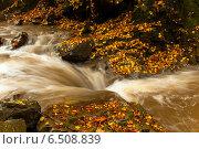 Купить «Осенний пейзаж с рекой в западных украинских Карпатах», фото № 6508839, снято 11 октября 2009 г. (c) Эдуард Кислинский / Фотобанк Лори