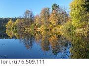 Купить «Осенний пейзаж с деревьями, отражающимися в воде спокойного озера», фото № 6509111, снято 8 октября 2014 г. (c) Михаил Марковский / Фотобанк Лори