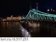Ночной Будапешт. Мост Свободы (2014 год). Редакционное фото, фотограф Сластникова Татьяна / Фотобанк Лори