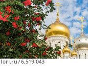 Купить «Зачатьевский Монастырь, фокус на куполе», фото № 6519043, снято 13 сентября 2014 г. (c) Павел Лиховицкий / Фотобанк Лори