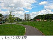 Купить «Парк 30-летия Ясенево, Москва», эксклюзивное фото № 6533299, снято 5 июня 2009 г. (c) lana1501 / Фотобанк Лори