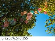 Воздушные шарики в ветвях деревьев (2014 год). Редакционное фото, фотограф Татьяна Мирохина / Фотобанк Лори