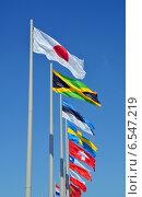 Купить «Флаги разных стран на флагштоках на фоне голубого неба», фото № 6547219, снято 13 сентября 2014 г. (c) Александр Замараев / Фотобанк Лори
