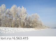Купить «Иней на деревьях морозным днем», эксклюзивное фото № 6563415, снято 22 января 2014 г. (c) Елена Коромыслова / Фотобанк Лори