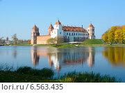 Купить «Мирский замок. Беларусь», фото № 6563435, снято 10 октября 2014 г. (c) Ирина Балина / Фотобанк Лори