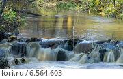 Купить «Течение спокойной реки в осеннем парке, таймлапс», видеоролик № 6564603, снято 18 октября 2014 г. (c) Кекяляйнен Андрей / Фотобанк Лори