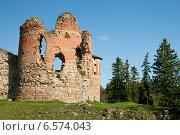 Эстония, замок Вана-Вастселийна, фото № 6574043, снято 5 сентября 2014 г. (c) Борис Заманский / Фотобанк Лори