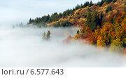 Купить «Туман в осенних горах. Карпаты», фото № 6577643, снято 30 апреля 2012 г. (c) Эдуард Кислинский / Фотобанк Лори